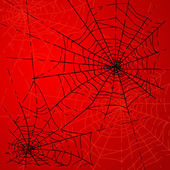 Halloween Spiders web — Stock Photo