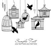 Gabbie per uccelli d'epoca. uccelli fuori dalla loro gabbie — Foto Stock