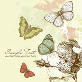 Butterfly Background — Stock Photo