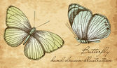 Vintage Butterfly Set — Stock Photo