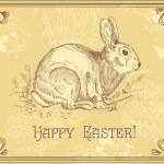 Conejo de Pascua — Foto de Stock