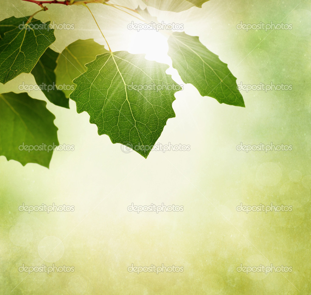 Autumn or fall border with leaves on textured background stock image