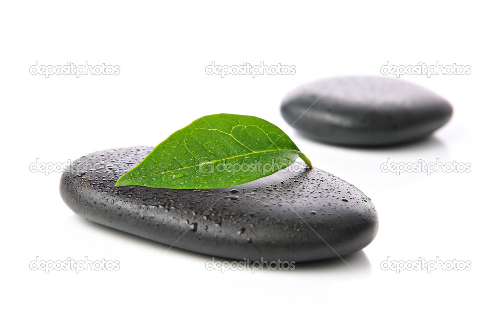 Zen basalt stones with green leaf on white background  Stock Photo #7525046