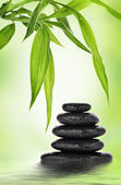 Zen basalt stones and bamboo — Stock Photo