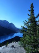Peyto jezero — Stock fotografie