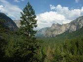 Yosemite milli parkı — Stok fotoğraf