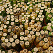 Stock Photo: Bamboo trees for sell