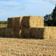 Royalty-Free Stock Photo: Haystack in the countryside