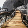 Wooden Bridge — 图库照片