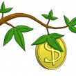 Money Does Grow on Trees! — Stock Photo