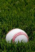 Baseball in field — Stock Photo