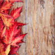 Foto Stock: Autumn background
