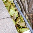 Stock Photo: Clogged gutter
