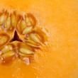 Stock Photo: Cantaloupe