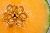 Cantaloupe — Stock Photo