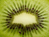 Kiwi closeup — Stock Photo