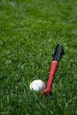 Baseball and bat — Stock Photo