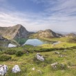 Lake Enol. — Stockfoto