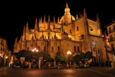Segovia Cathedral. — Stock Photo