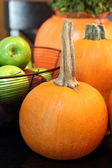 Autumn Bounty II — Stock Photo
