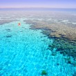 Coral reef (2). Red Sea. Egypt. — Stock Photo