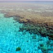"Seascape with coral reef ""Napoleon"". Red Sea. Egypt. — Stock Photo"