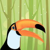 Toucan Bird in The Jungle — Stock Vector