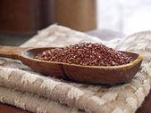 Quinua roja — Foto de Stock
