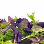 Mixed spring greens — Stock Photo