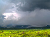 Monsoons at Tonto National Forest — Stockfoto