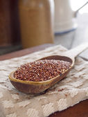 Red quinoa — Stock Photo