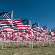 American flags — Stock Photo #7524823