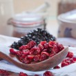 Dried cranberries & blueberries — Stock Photo