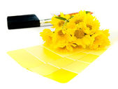 Bright yellow paint plan — Stock Photo