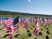 американские флаги — Стоковое фото
