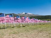 American flags — Foto de Stock