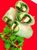 Spring rolls — Stock Photo