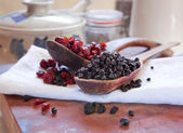 Dried blueberries & cranberries — Stock Photo