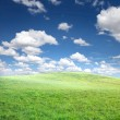 Stock Photo: Green grass and blue sky with clouds