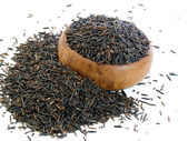 Wild rice — Stock Photo