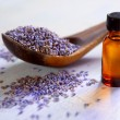 Dried lavender with essential oil - Stock Photo