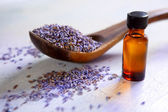 Dried lavender with essential oil — Stock Photo