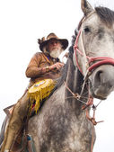 Cowboy on a horseback isolated — Stok fotoğraf