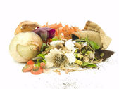 Compost — Stock Photo
