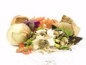 Compost — Stock Photo