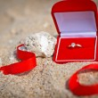 图库照片: Propose at beach