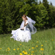 Bride — Stock Photo #7477146