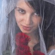 Brunette bride with red roses — Stock Photo