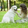 Girl with golden retriever in park — Stok Fotoğraf #7488685