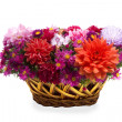 Basket of flowers on a white background — Stock Photo #7488733